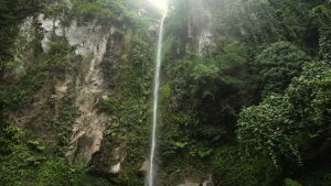tropical-rainforest-in-mountains