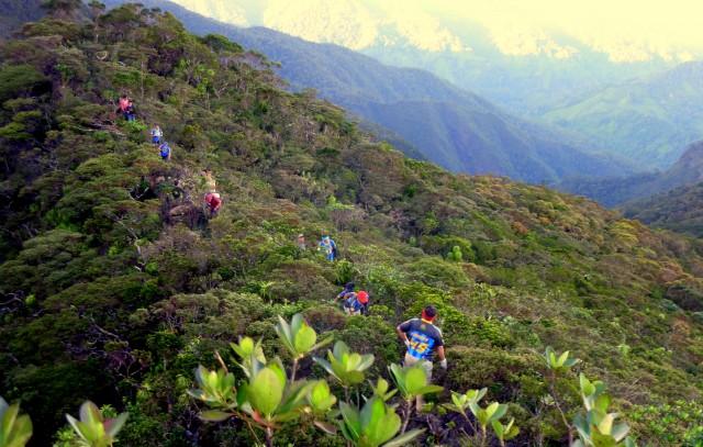 Mantalingahan-mountain-palawan-philippines