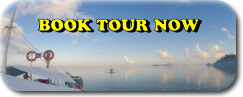 book-tour-now