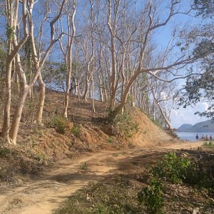 island-hopping-philippines-stroll-050420152701