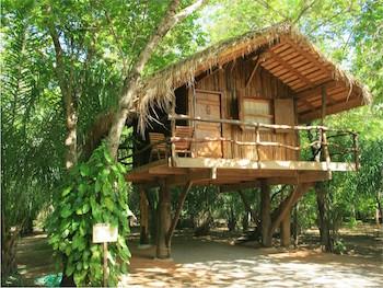 kitesurfing-cabana-junglehut