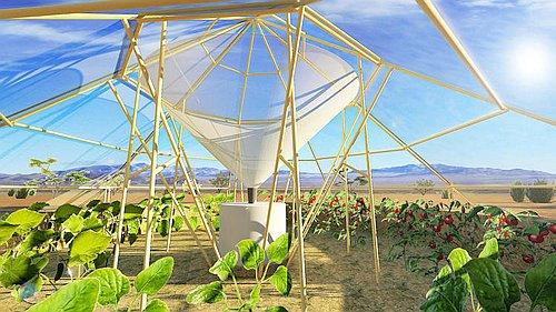 Dew-Harvesting-Greenhouse