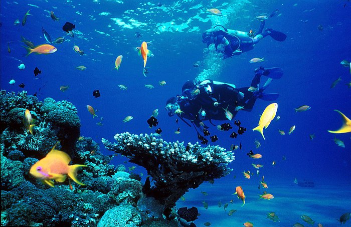 nature-natural-beauty-philippines-Tubbataha-Reefs-Natural-Park
