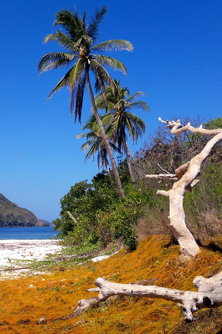 boat-tours-philippines-040420152685