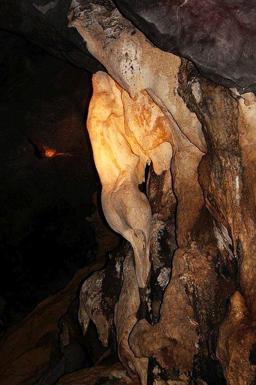 private-underground-river-tour-in-sabang-puerto-princesa-10408530_10205453971534988_7189820843950318783_n