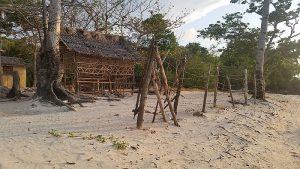 araw-beach-boat-tours-20170317_063125