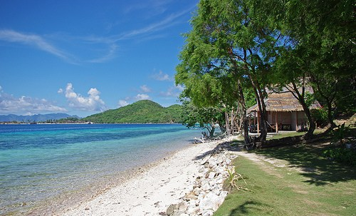 Banana-Island-7135657495_656e684e9e