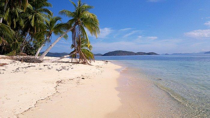 return-trip-manila-palawan_140220152395