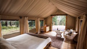 glamping-philippines-image