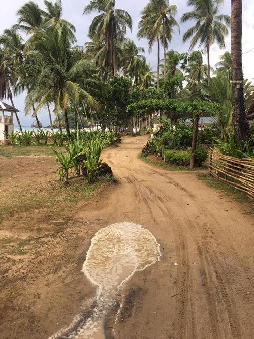 sabang island hopping philippines