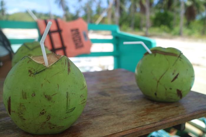 Fresh cocnuts on Combination El Nido Tour plus Multiday Tour to Coron.