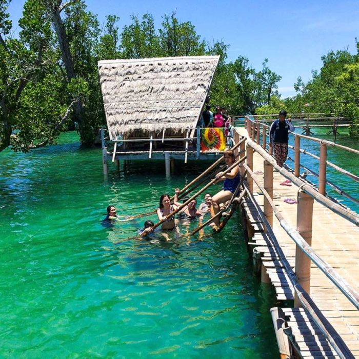 Iloilo-City-Bacolod--Mangrove-Eco-park-Suyac Island-6
