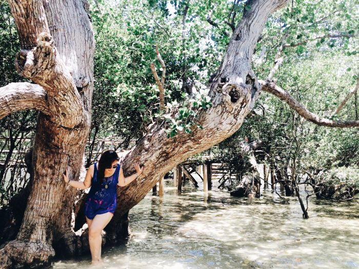 Iloilo-City-Bacolod--Mangrove-Eco-park-Suyac Island-wading-water