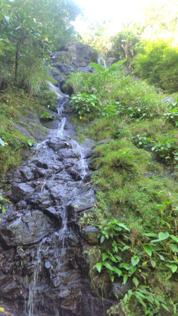 Igpasungaw-Waterfalls-Sebaste-20190113_113513
