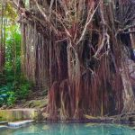 Mysterious Siquijor: The Must-Visit Spots